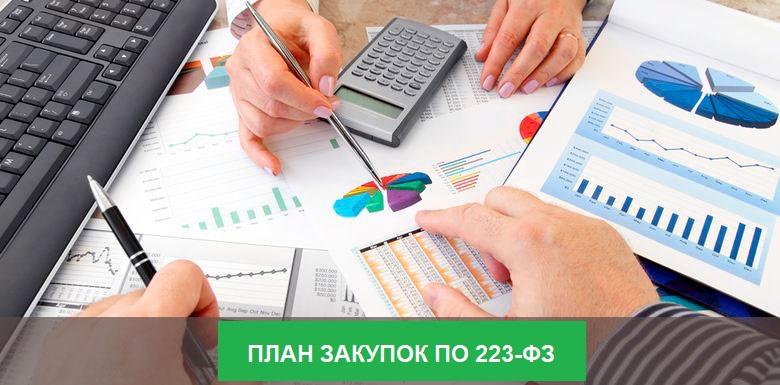 План закупок по 223-ФЗ