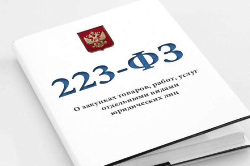 «Разъяснение новых норм и требований при осуществлении закупок в рамках Федерального закона № 223-ФЗ в 2021-2022 гг. Порядок работы комиссии по осуществлению закупок»
